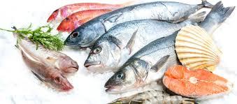 Kunci Penting Dalam Memilih Ikan Segar